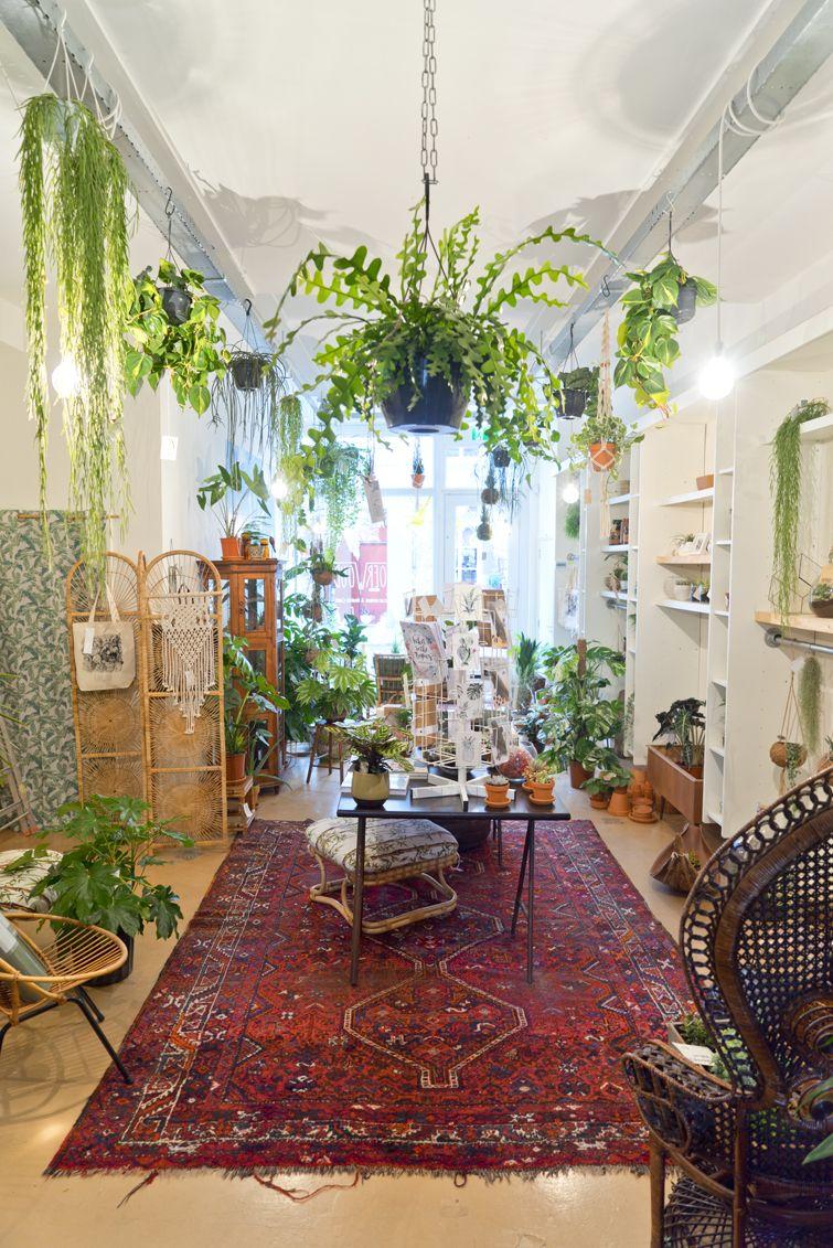 Oerwoud plant shop in Den Bosch | Pinterest | Grüne zimmer ...