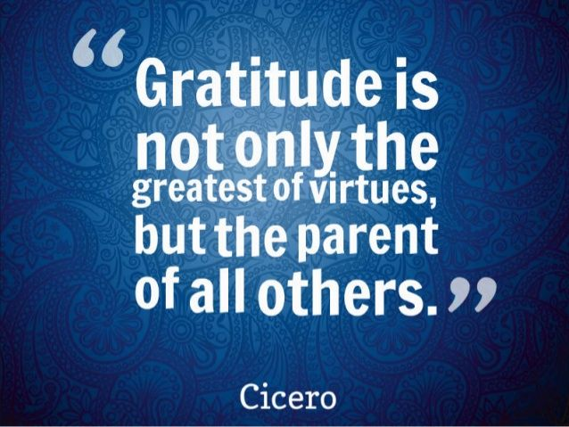 essay on gratitude is one of the greatest virtues