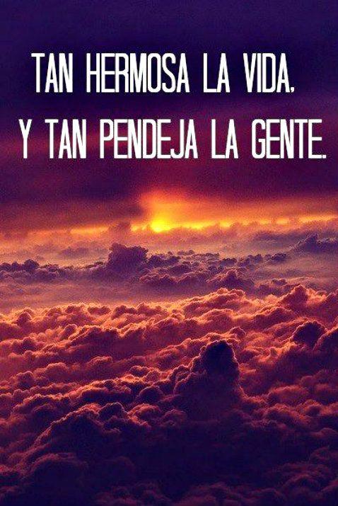Tan Hermosa La Vida Y Tan Frases Bonitas Frases