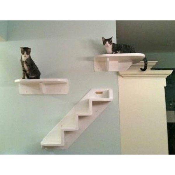 Wall Mounted Cat Shelves Home Wrap Around Corner Cat