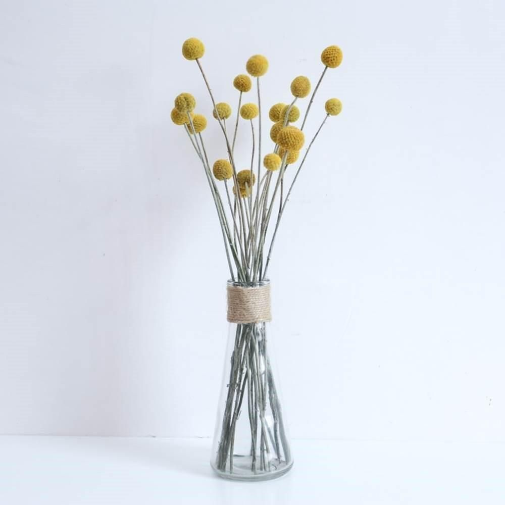 Australian Native Natural Dried Craspedia Billy Button Flower Stem Natural Yellow In 2020 Dried Flower Bouquet Button Flowers Australian Native Flowers