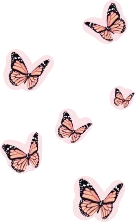 Sticker Af Autumnhamm In 2020 Butterfly Wallpaper Iphone Pink Aesthetic Pink Wall Art