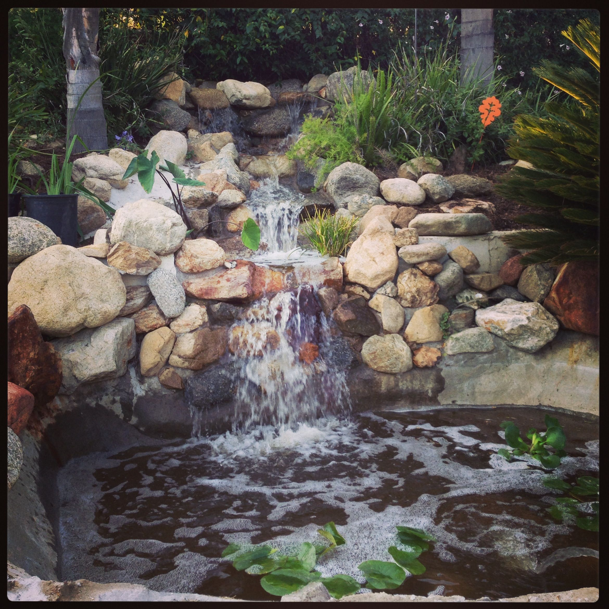 Small Garden Ponds And Waterfalls: My Backyard Waterfall And Pond.