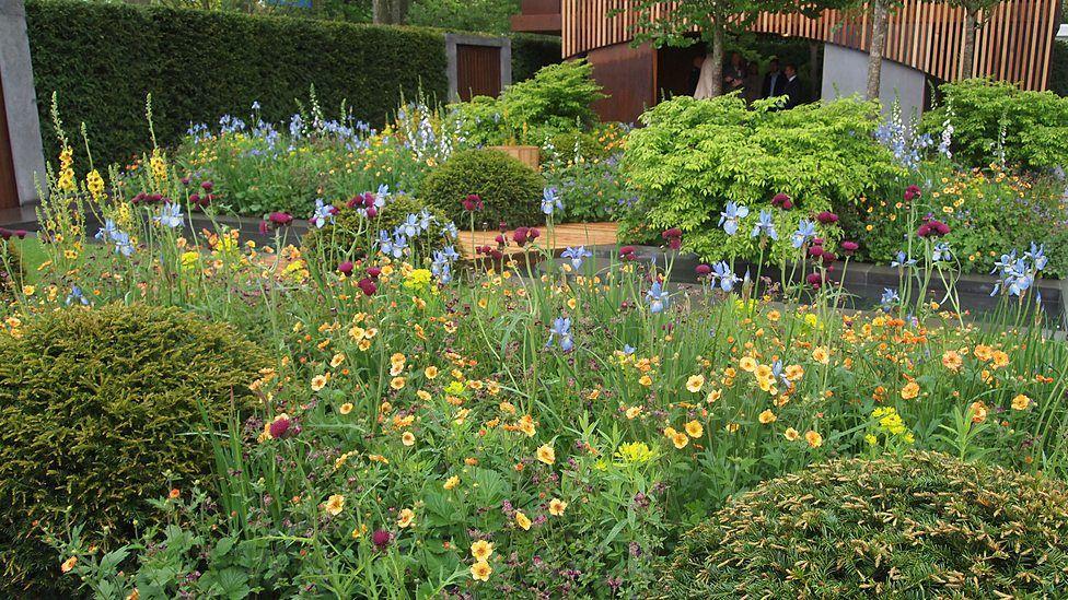 Chelsea 2015   Show Gardens The Homebase Urban Retreat Garden By Adam Frost