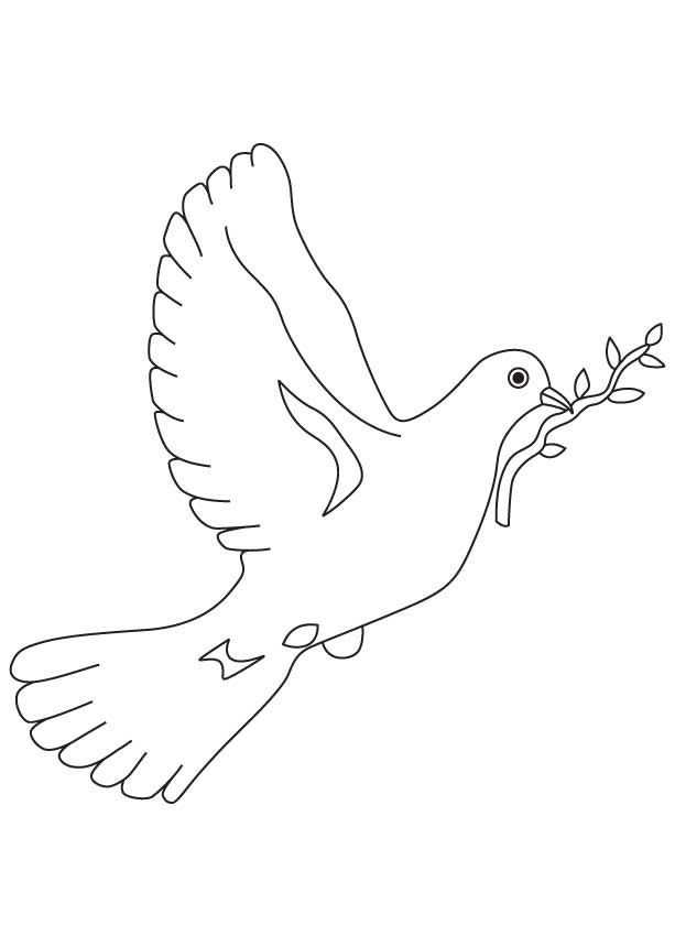Dove A Symbol Of Peace Coloring Page Coloring Pages Bible Coloring Pages Coloring Pages For Kids