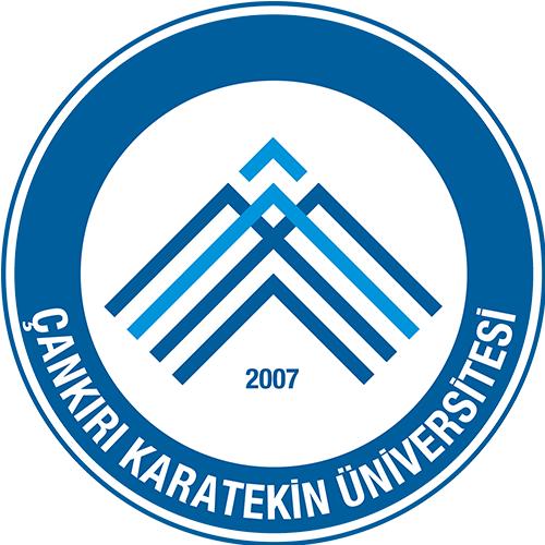 Cankiri Karatekin Universitesi Panosundaki Pin