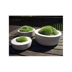 zauberschalen * gartendeko aus beton * deko | diy | pinterest, Hause und Garten