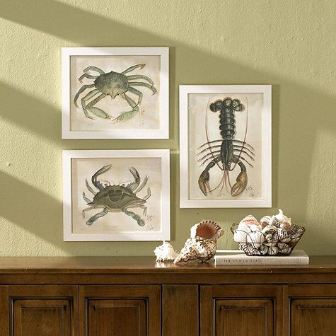 Haus and Home: Framed Sea Fans, Sea Life and Coral Pictures | Art + ...
