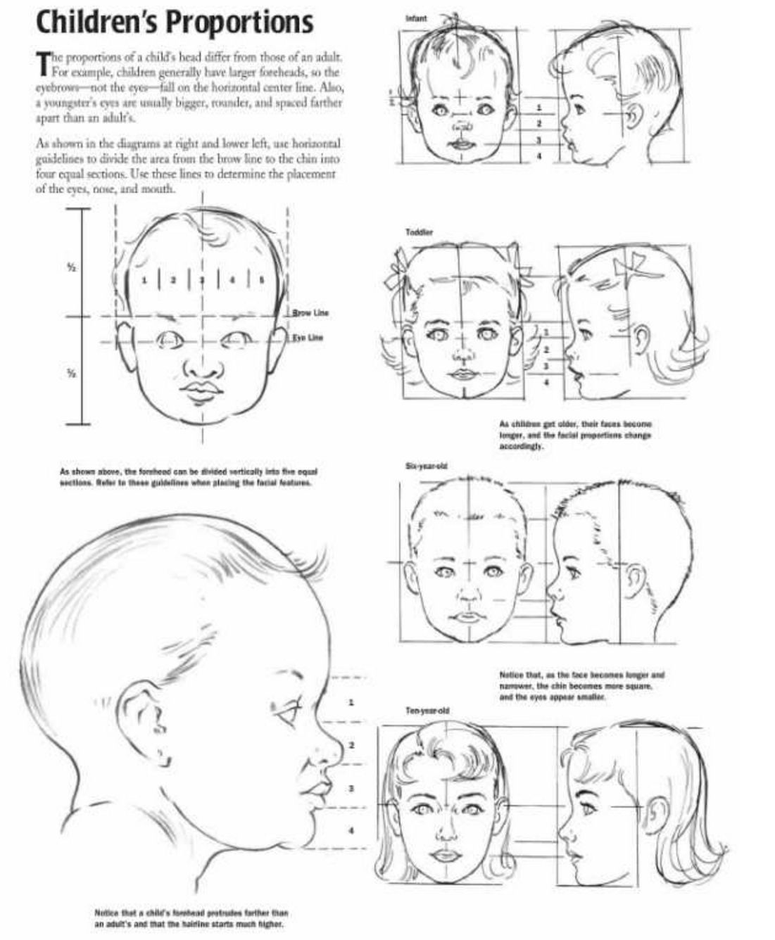 Proportions of children infant and baby heads reference sheet