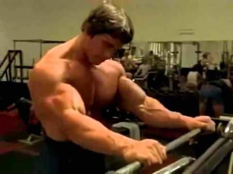 Arnold Schwarzenegger Workout Tips 5 Things I Learned Youtube