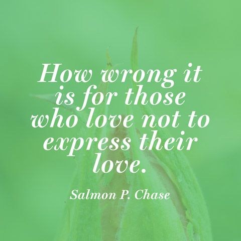 Charmant Quote About Expressing Love   Salmon P. Chase