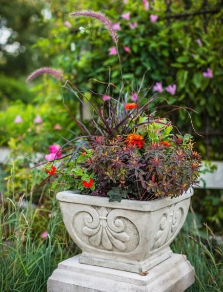 Creative Garden Containers Recycle flea-market finds, wooden boxes, garden accessories, kitchen bowls and more into fun container gardens.Recycle flea-market finds, wooden boxes, garden accessories, kitchen bowls and more into fun container gardens.