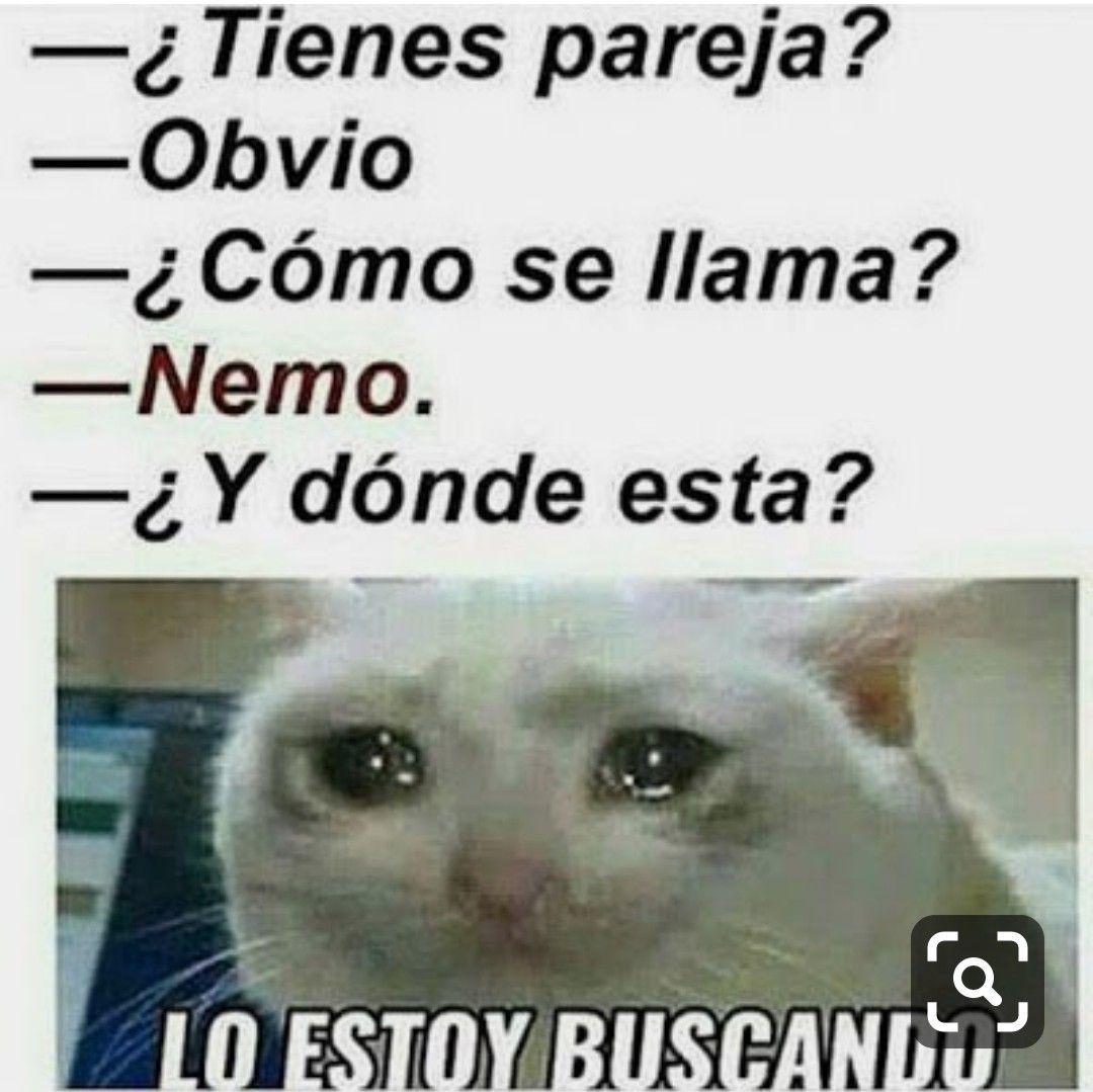 Pin By Sofysanchez On Memes New Memes Memes En Espanol Funny Spanish Memes