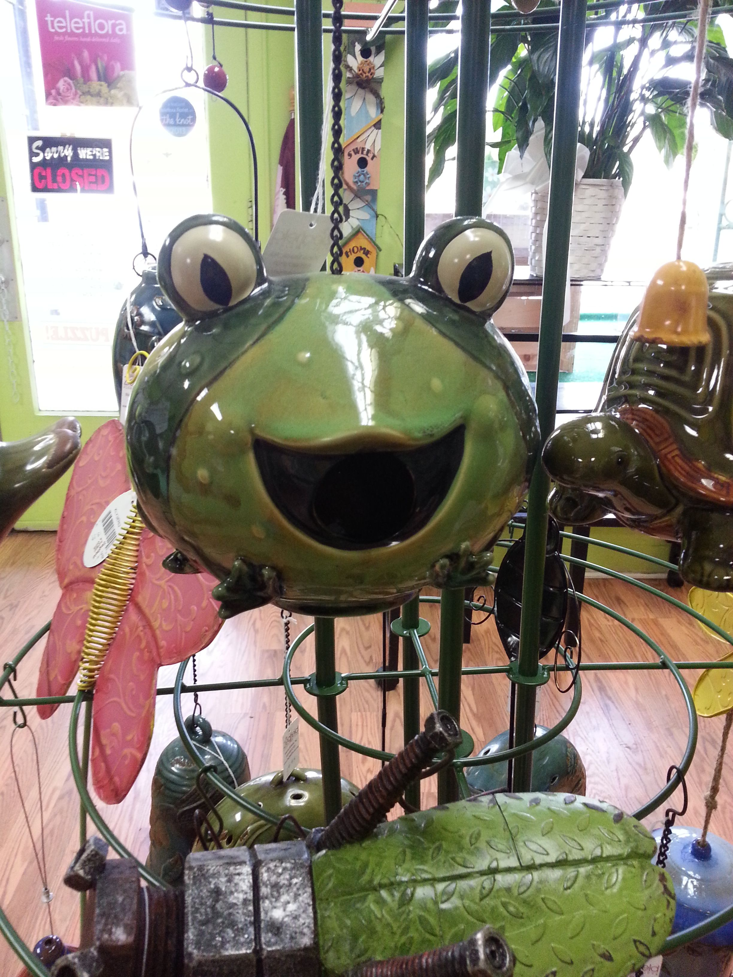Is your mom crazy for frogs? What frog lovers wouldn't love this frog birdhouse?