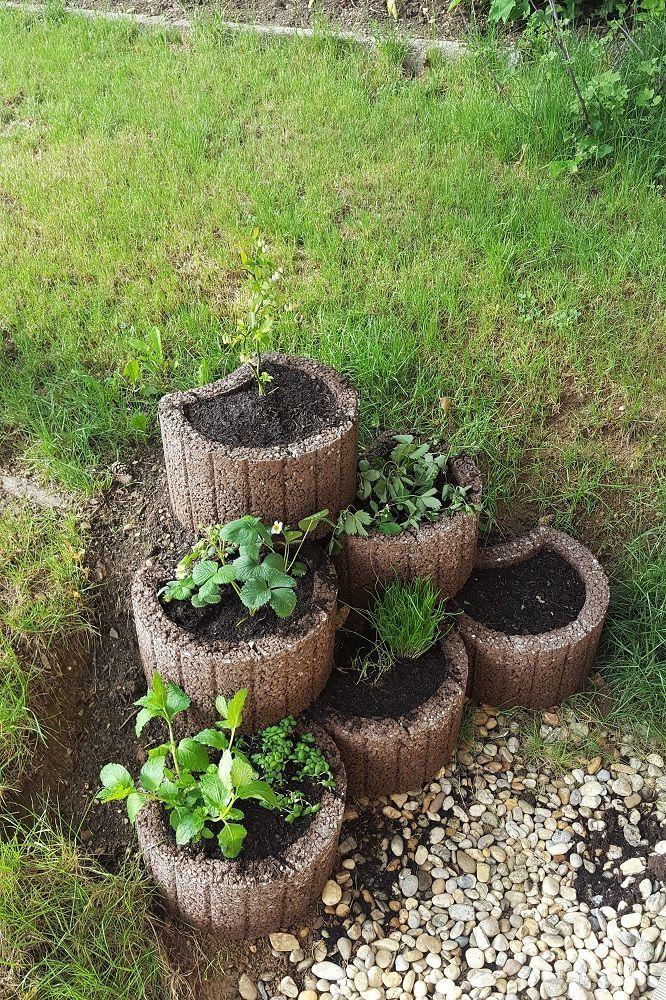Gartenprojekt: Pflanzenstufen | DO-ITeria