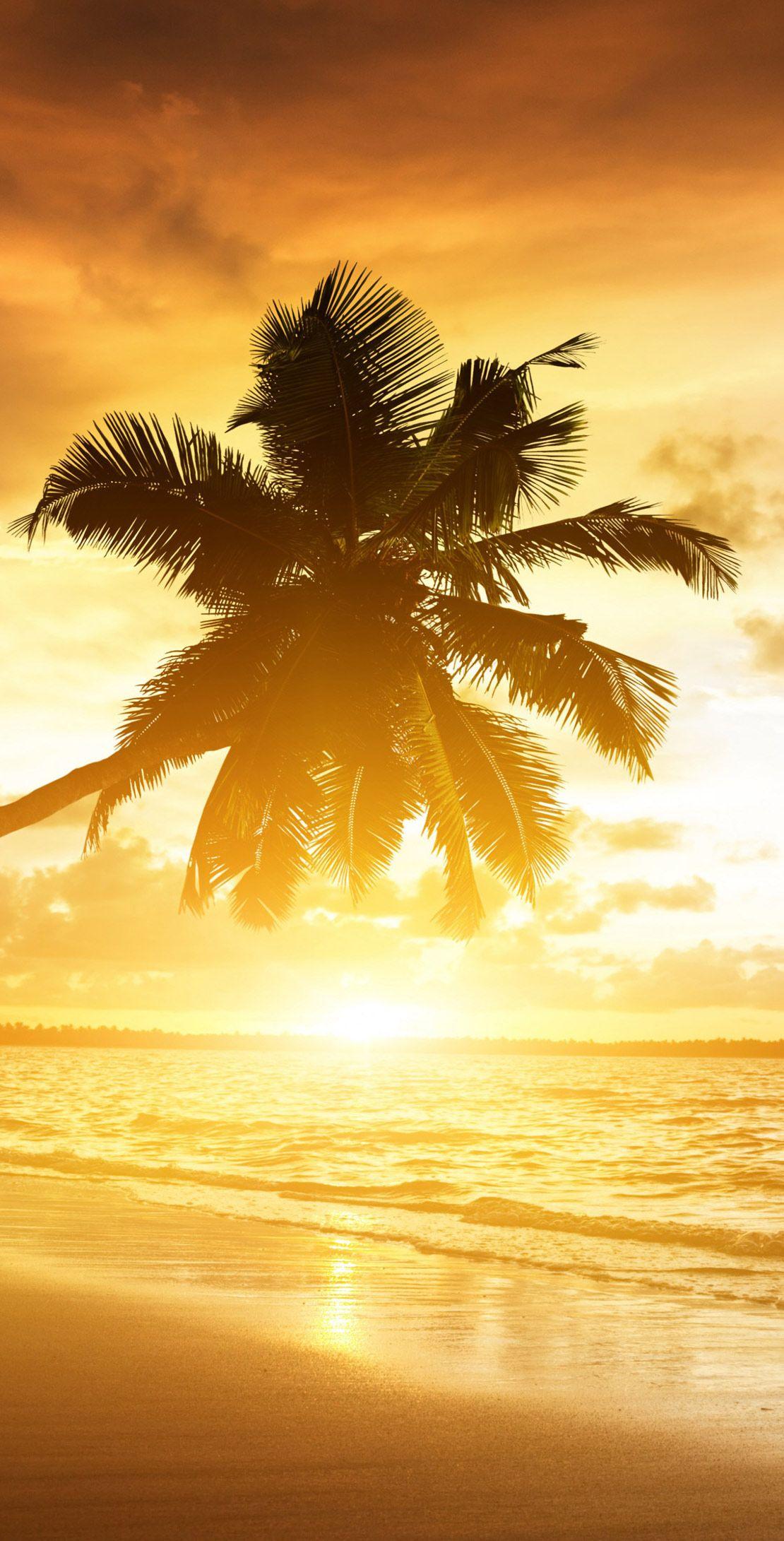 Nature Hd Widescreen Wallpapers Sunset Beach 4k Wallpaper Http Www