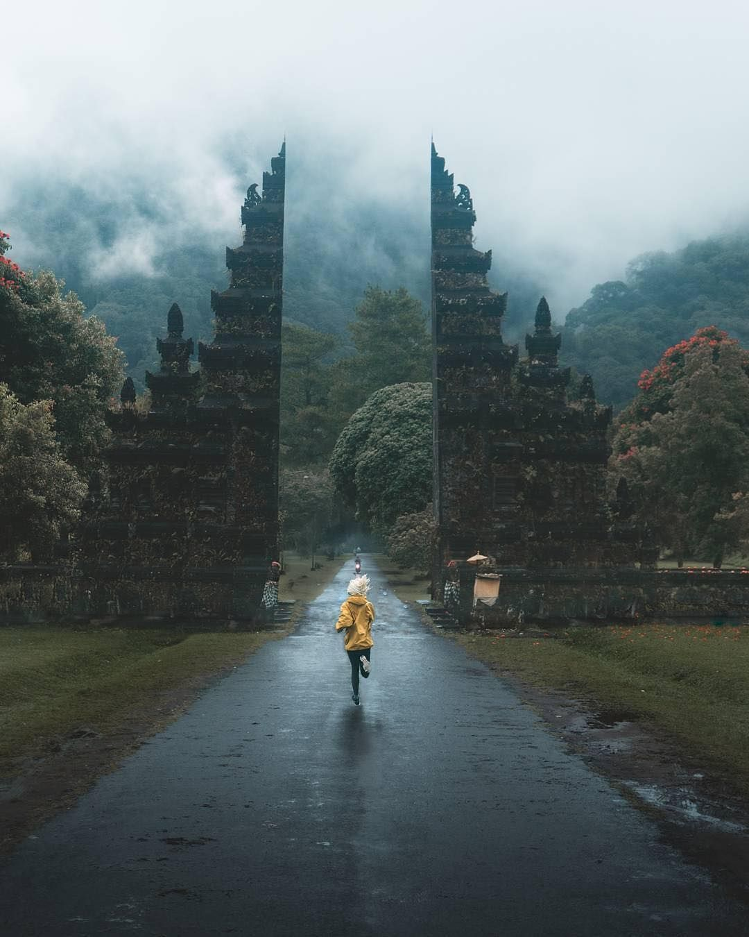 Bali, Indonesia Photograph danmaniel indonesia… in 2020