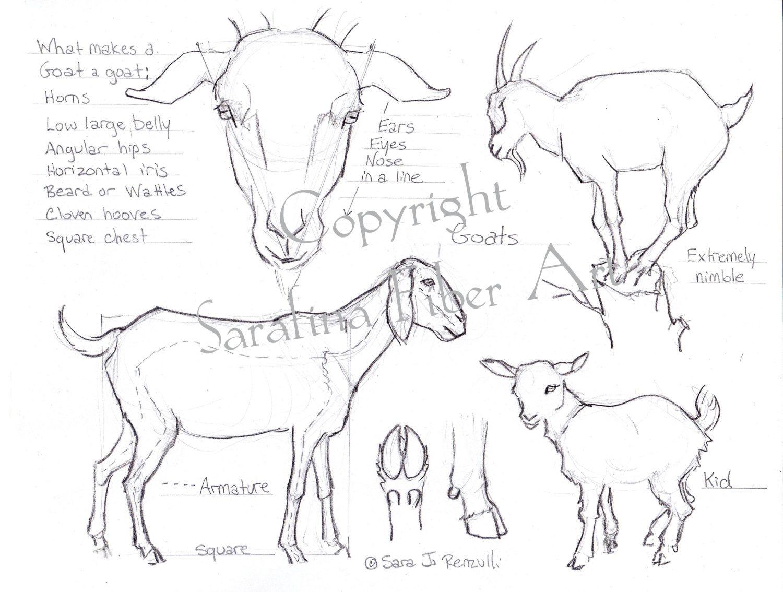 Sheep/Goat Reference Chart PDF van SarafinaFiberArt op
