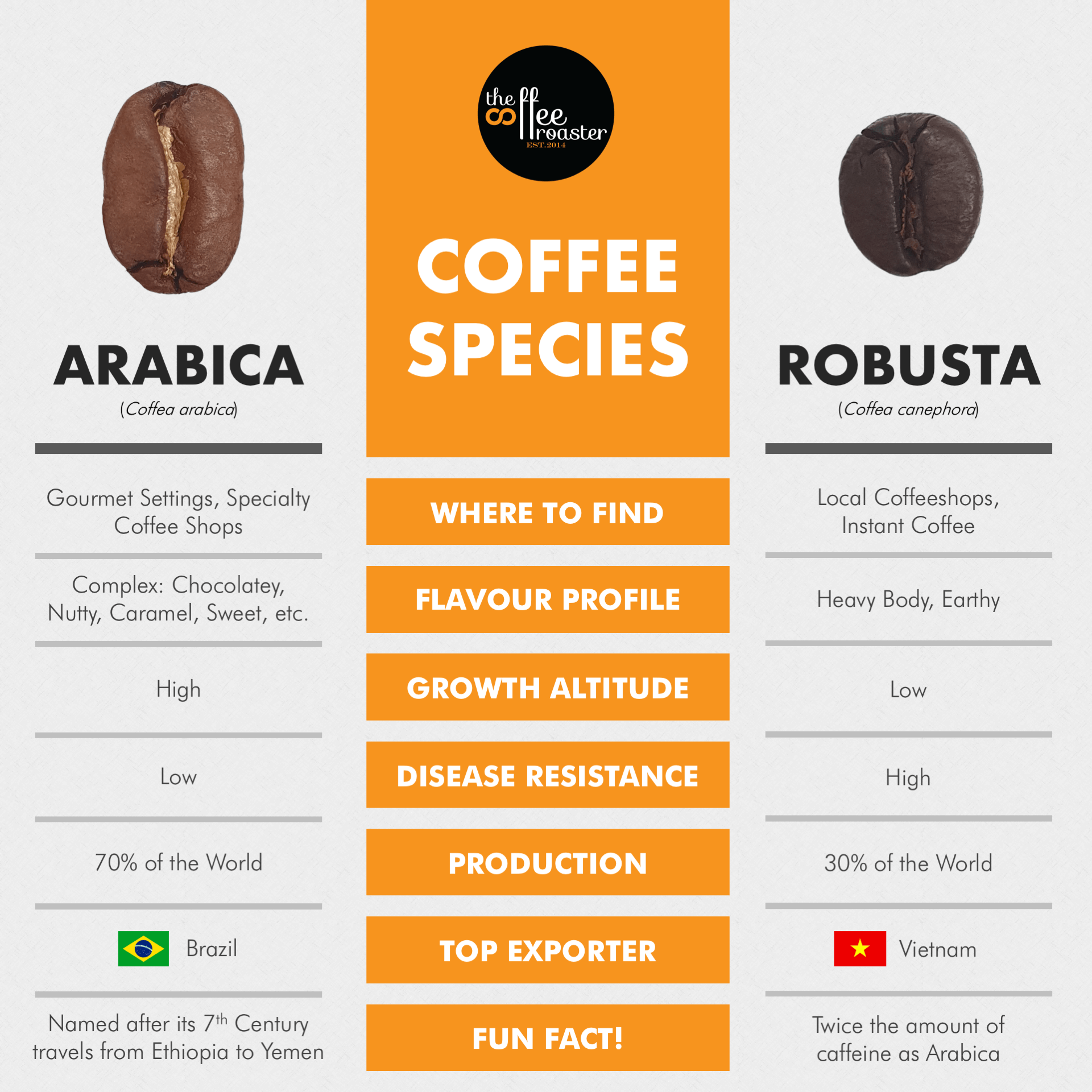 What Have You Bean Drinking Your Essential Guide To Coffee Species Gourmet Coffee Bad Coffee Coffee Type