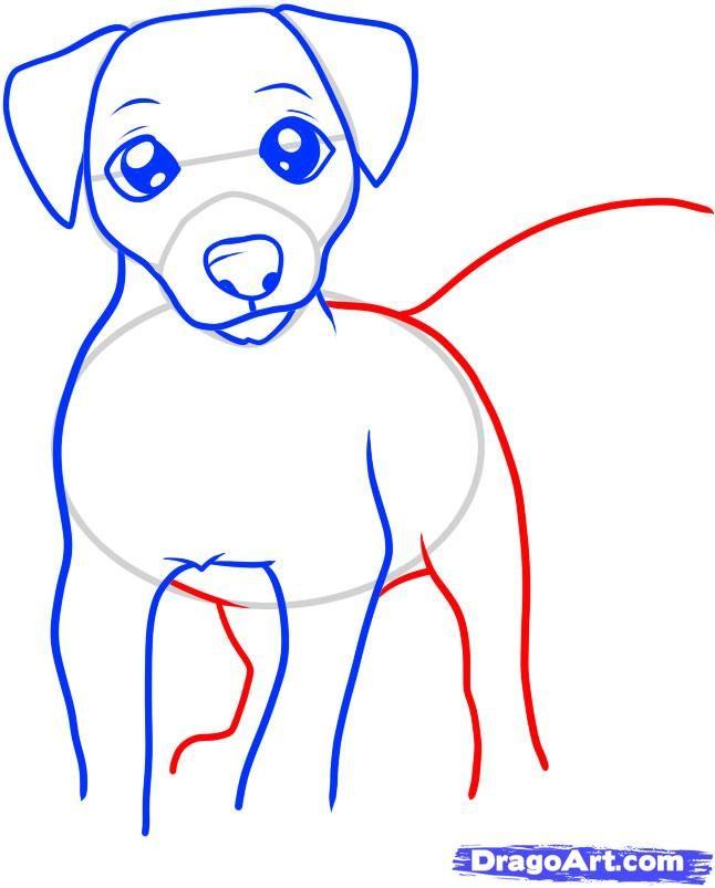 How To Draw A Jack Russell Terrier Step 5 Dieren Tekenen