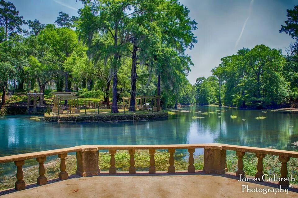 Radium Springs Albany Georgia Ga Attractions Things To Do In Www Visitalbanyga