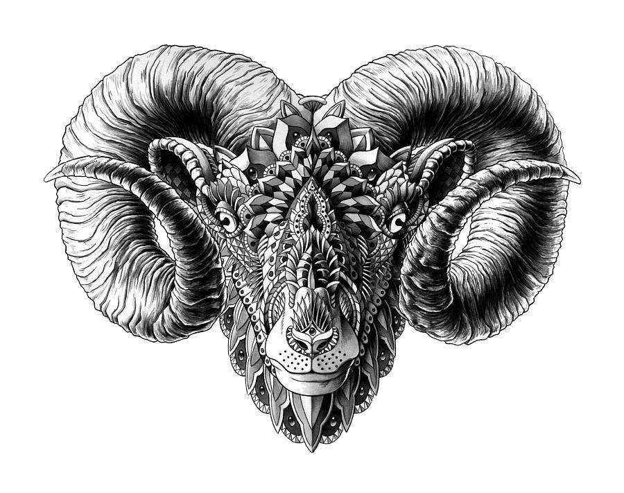 01c5751d4 Pin by jonny wang on ARIES Tattoo Designs for Men and Woman | Ram ...