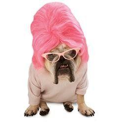 20 Hilarious Dog #Halloween #Costumes