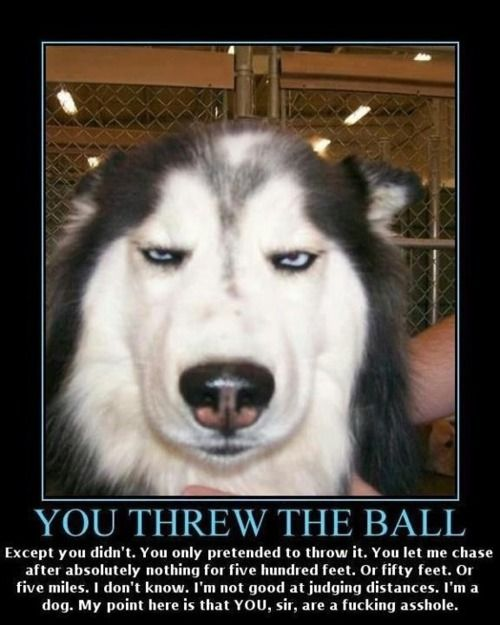 You threw the ball... Classic!