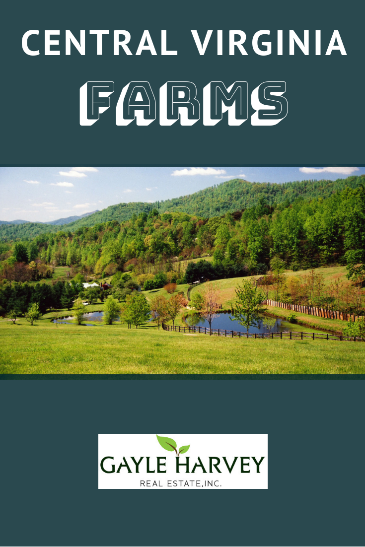 small farms for rent near me on central virginia farms real estate marketing horse farms for sale farm pinterest