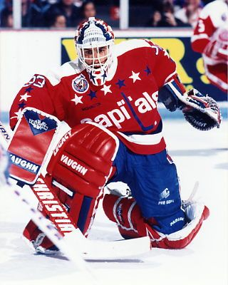 Don Beaupre #33 My favorite goalie when I was growing up.