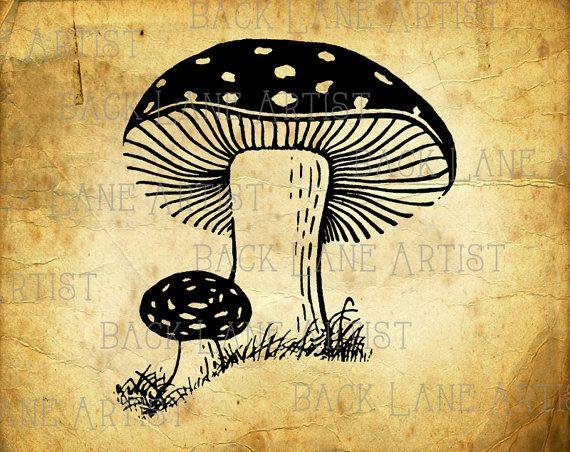 Natural Mushroom Toadstools Clipart Lineart Illustration Instant Download PNG JPG Digi Line Art Image Drawing L322