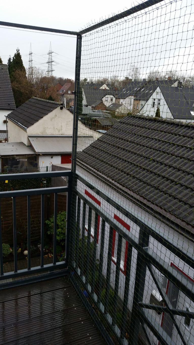 Schiebbares Katzennetz System Ohne Bohren Am Balkon Katzen