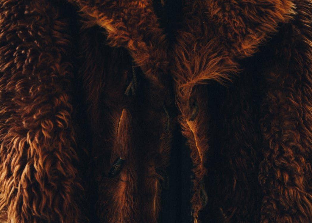The high fashion fur debate brown fur coat fur coat fur