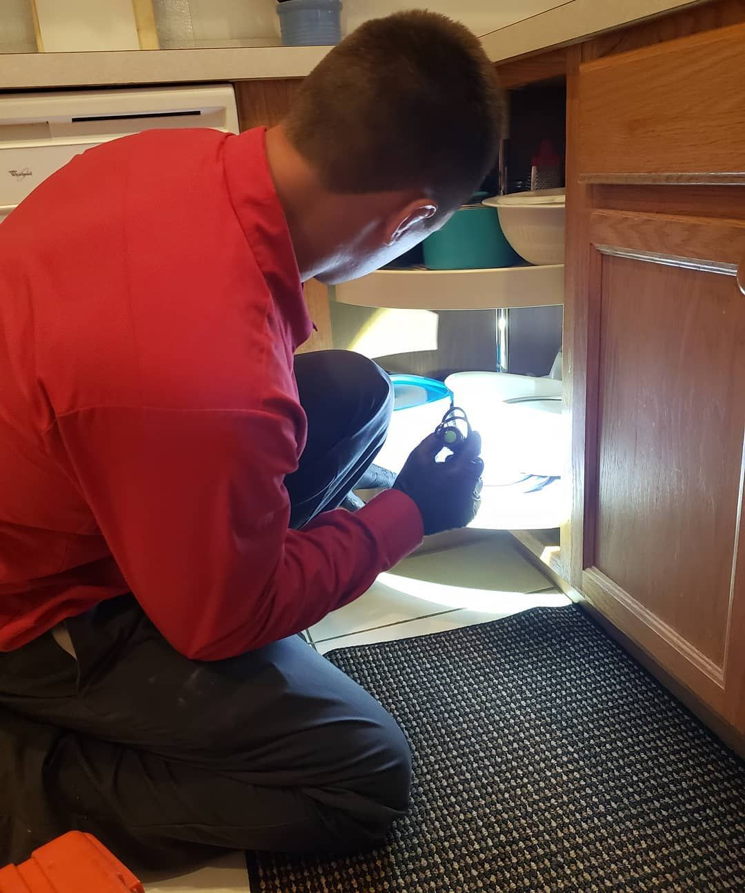 Pin by Adam's Pest Control on Home Pest Control Pest