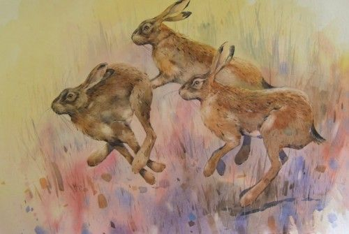 Paintings by Derek Robertson. i have a couple of his prints, they're just gorgeous