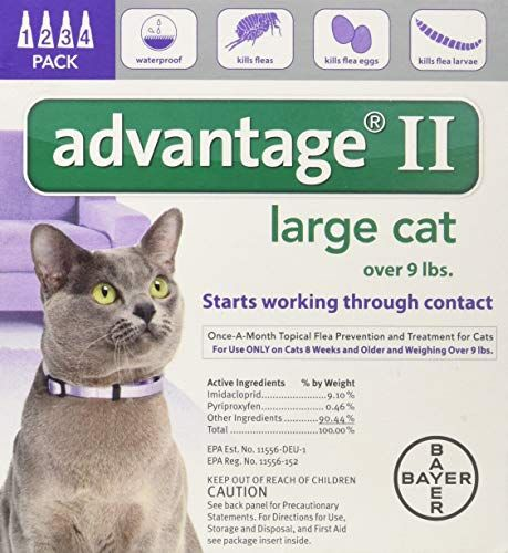 Advantage II Large Cat 4Pack (With images) Cat fleas