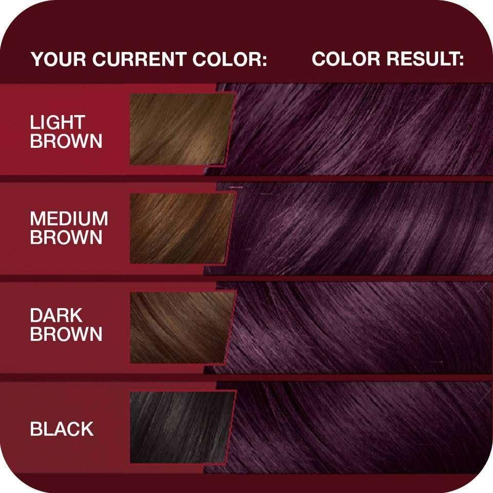 Amazonsmile vidal sassoon pro series hair color vr deep velvet violet kit chemical dyes beauty also which new ion brilliance permanent rh pinterest