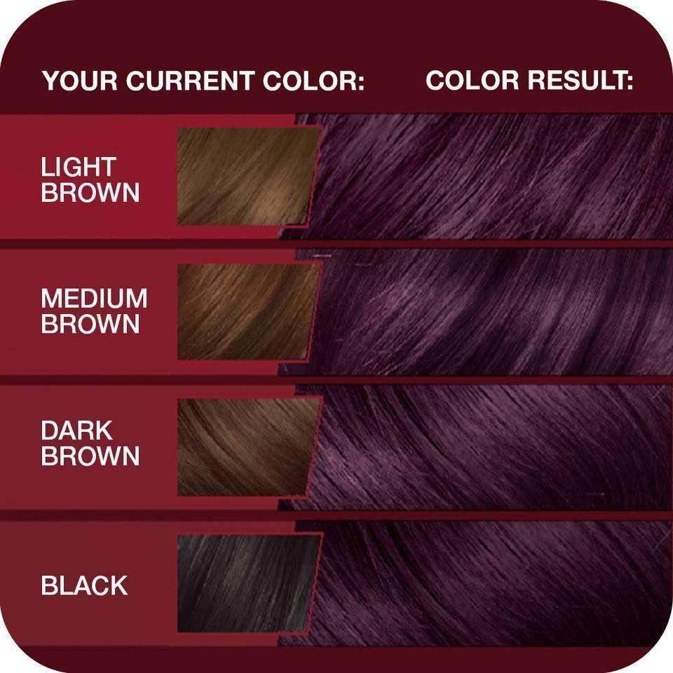 Merlot Hair Color - Merlot hair color google search