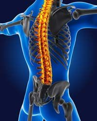 Rib Cage Pain: Common Causes, Signs, Symptoms, Diagnosis and Treatment