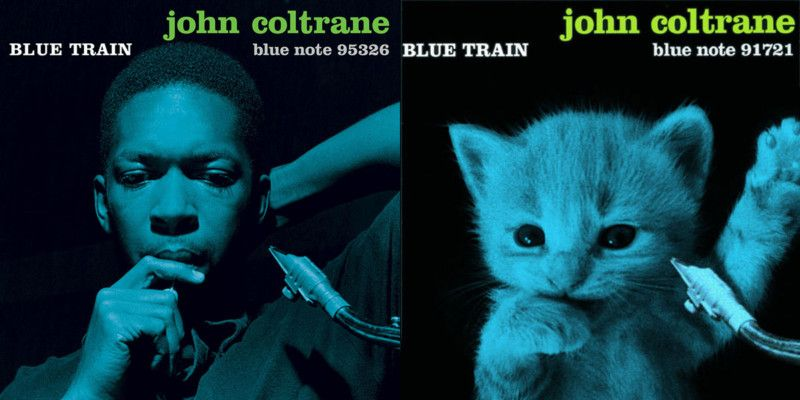 Pin By Wizardman On Album Covers Cats Famous Album Covers Album Covers Cat Photo