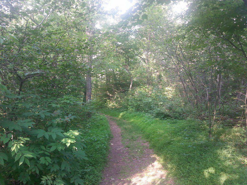 My Appalachian Trail Dream