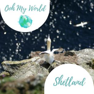 Shetland #shetlandislands