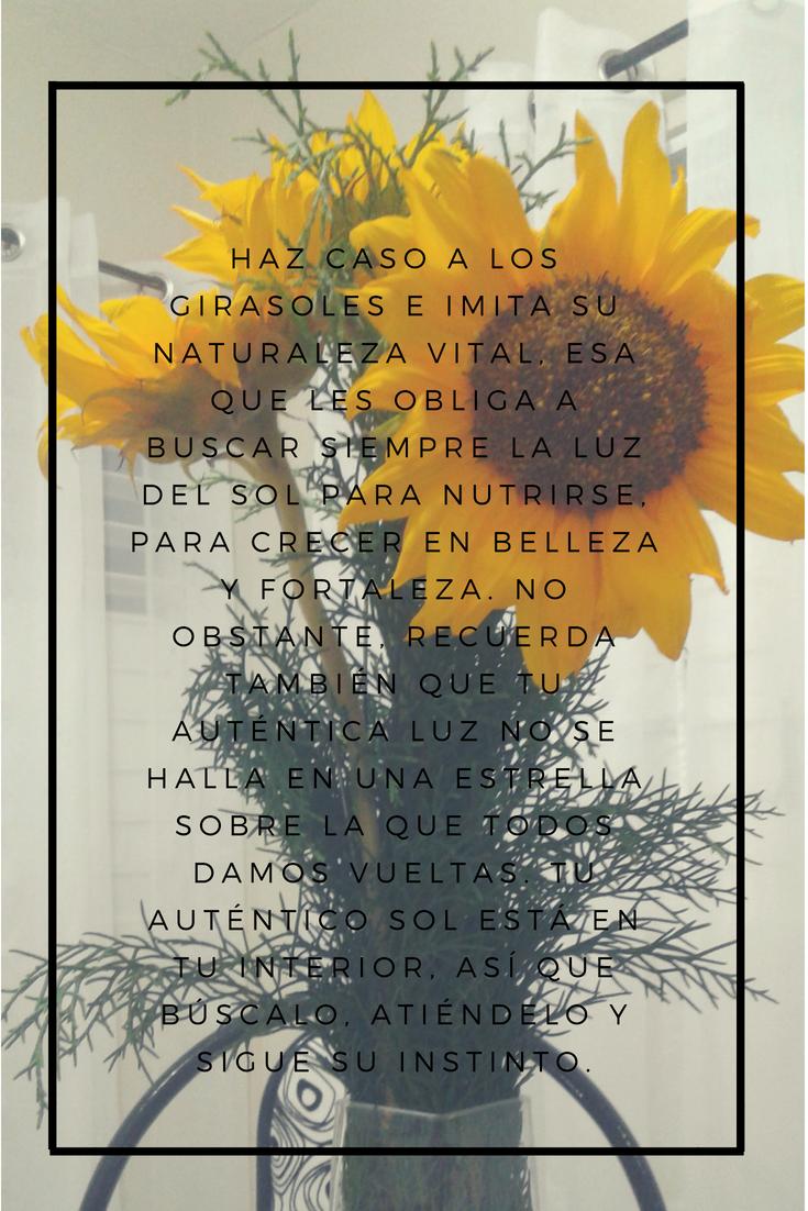 Frases Girasol Positivismo Luz Amor Citas Pinterest