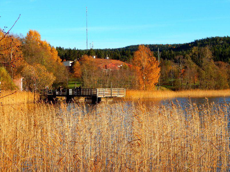 Sundsvall Nature Walk: Sidsjön   My Travels - Past ...
