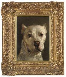 "Portrait of a white Boxer Dog, oil on canvas 12.5"" x 9.5"""