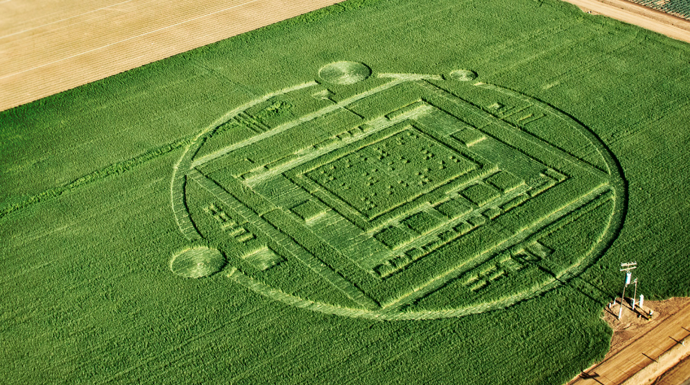 The mysterious crop circle discovered in Salinas, California turned out to be…