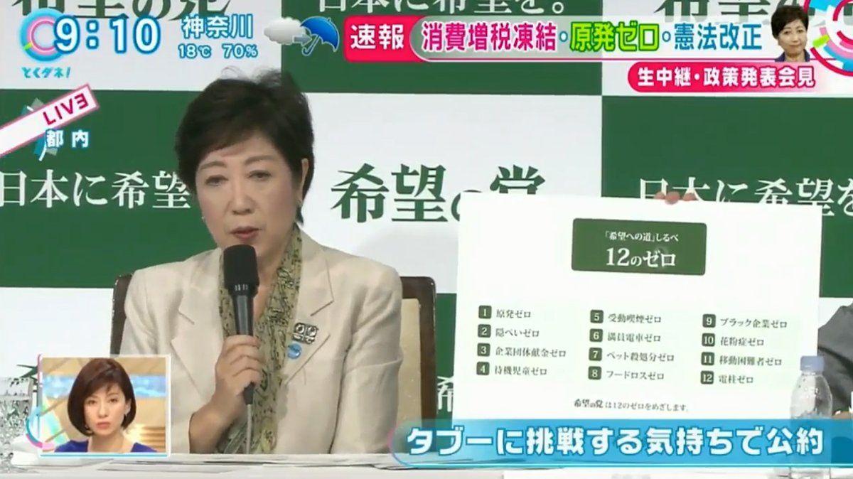 希望の党の小池百合子代表公約の1つに花粉症ゼロを宣言 花粉症 希望 百合子
