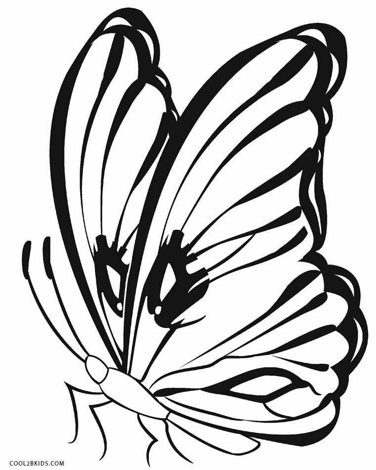 butterfly coloring pages free printable butterfly drawings