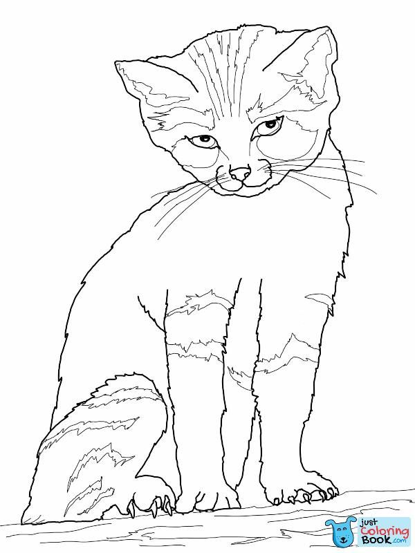 Free Printable Cat Coloring Pages For Kids Inside Free Cute Kitten With Bow Tie Coloring Pages Pola Sulam