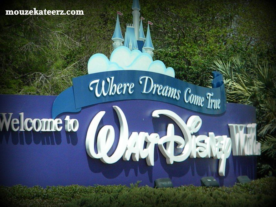 Here's The List You Really Need For Driving Around Walt Disney World – Mouze Kateerz